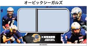 06_train_seaguls.jpg
