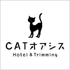 CAT オアシス
